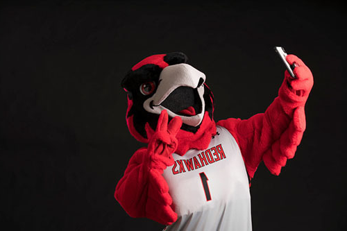 rowdy the redhawk mascot holding a phone up and taking a selfie